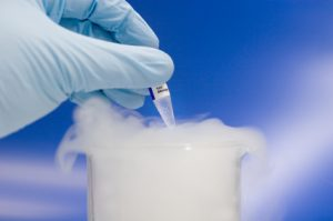 Frozen sample